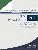 ReformaPenal2008-2016.pdf
