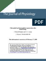 Chlorophyll and Haemoglobin Regeneration After Haemorrhage