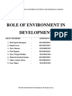 THE_ROLE_OF_ENVIRONMENT_IN_DEVELOPMENT.docx