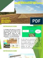 PROPIEDADES BIOLOGICAS DEL SUELO.pptx