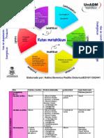 Rutas metabolicas.pdf