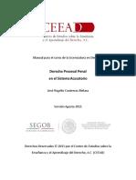 Manual DPP para LED.docx