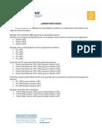 LAP-1_Redes.pdf