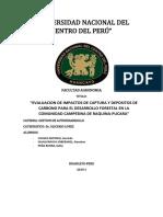 PROYECTO-RAQUINA.docx