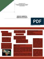 Ecología y Derecho.ppt