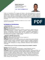 CV  Ing Yojan Perez  CL.