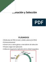 10 Clonación y Selección.pdf
