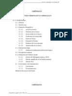HIDROLOGIA PUENTE EL TRIUNFO.doc