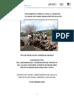 PLAN DE APROVECHAMIENTO SAJALICE.pdf