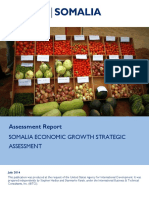 Somali economic challenges