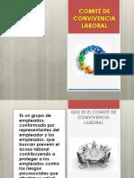 ROLES Y RESPONSABILIDADES COMITÉ DE CONVIVENCIA LABORAL 2