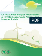The_Renewable_Energy_Sector_and_Youth_Employment_in_Algeria__Libya__Morocco_and_Tunisia-1