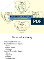 maternalanatomyshi-180802143352.pdf