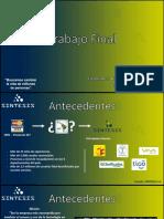 Empresa SINTESIS S.A. (Bigabriel - Ossio).pptx