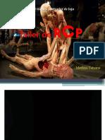rcp-170418005958.pdf