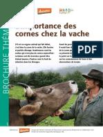 Limportance-des-cornes-chez-la-vachecornes-FIBL