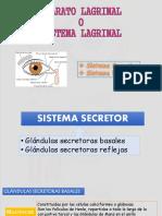 aparatolagrimal-141126213122-conversion-gate02.pdf