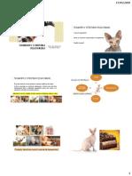 Aula 9 Tegumento e estruturas  relacionadas.pdf
