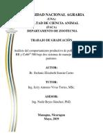 Tesis pollos RR 2019 Sunsin.pdf