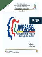 4. Inpsasel [Modo de compatibilidad].pdf