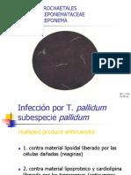 aspectos_basicos_laboratorio_en_sifilis-qf_liliana_urra.pdf