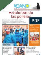 El-Ciudadano-Edición-348