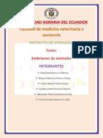 Embrion de pollo.docx-1.docx