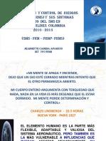 16. PASOS HACIA  LA  IMPLEMENTACION  DEL  FRMS EN  COPA 2015.pdf