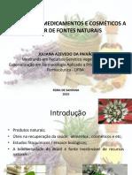 MINICURSO SENAI.pdf