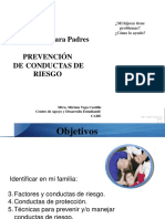 conductasdeproteccion-120615154000-phpapp01.pptx