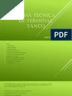 Ficha técnica de terminal taxco