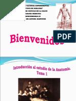 INTRODUCCION A LA ANATOMIA JATNIEL.ppt