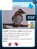 AVES juego aves