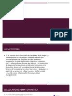 Equipo 4 Hematopoyesis FTP02A 20-2