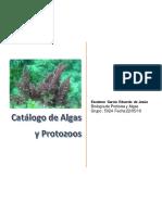 catalogo de  algas