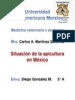 Apicultura en México
