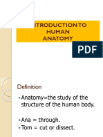introduction lecture.pdf