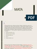 153151_MATA.pptx