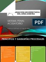 DIAPOSITIVAS CLASE SISTEMA PENAL ACUSATORIO-3.pdf