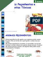 ANIMAIS PEÇONHENTOS E PLANTAS TÓXICAS - P.M. SÂO PAULO.ppt
