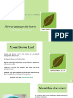 Dry Leaf Composting Guide.pdf