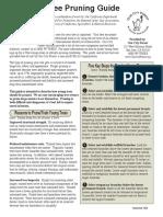 04-tree-pruning-guide.pdf