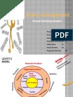 Brand Mgnt Models