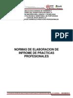 Normas de Elaboracion de Informe p.p.