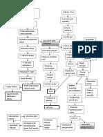 patofisiologi-apensiditis