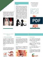 Trastornos del aparato digestivo.docx