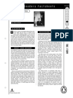 The firm factsheet.pdf