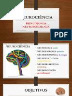 principios da neuropsicologia