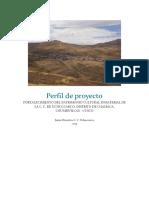 Perfil de proyecto ccu