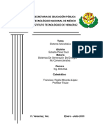 PROYECTO NANCHI (2).docx